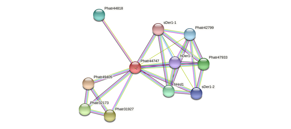 Phatr44747 protein (Phaeodactylum tricornutum) - STRING interaction network