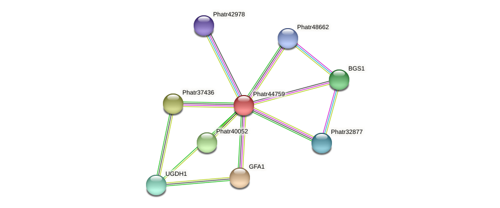Phatr44759 protein (Phaeodactylum tricornutum) - STRING interaction network