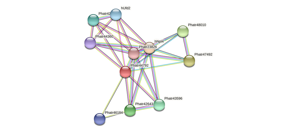 Phatr44792 protein (Phaeodactylum tricornutum) - STRING interaction network