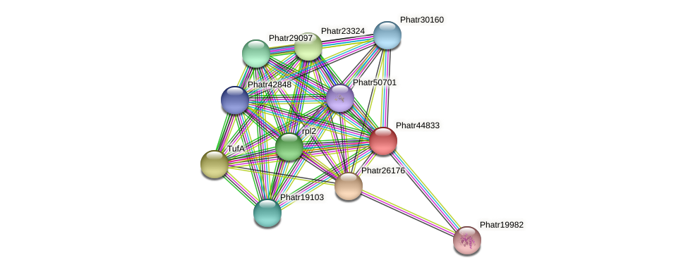 Phatr44833 protein (Phaeodactylum tricornutum) - STRING interaction network