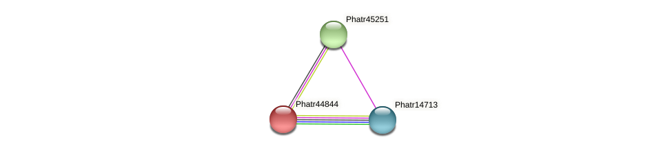 Phatr44844 protein (Phaeodactylum tricornutum) - STRING interaction network