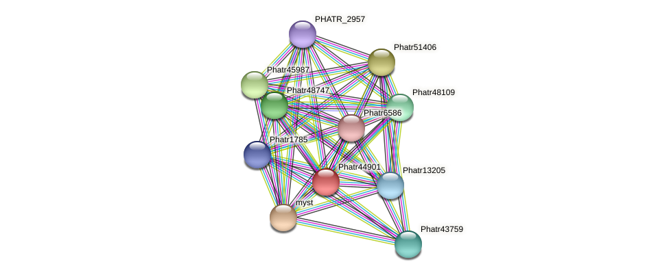 Phatr44901 protein (Phaeodactylum tricornutum) - STRING interaction network