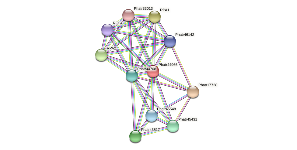 Phatr44966 protein (Phaeodactylum tricornutum) - STRING interaction network