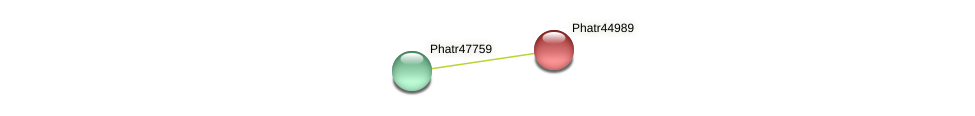 Phatr44989 protein (Phaeodactylum tricornutum) - STRING interaction network