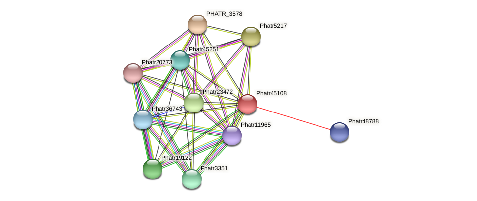 Phatr45108 protein (Phaeodactylum tricornutum) - STRING interaction network