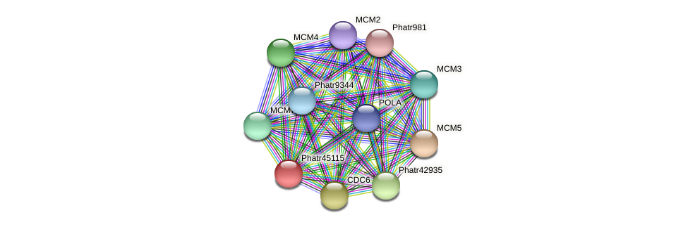 Phatr45115 protein (Phaeodactylum tricornutum) - STRING interaction network
