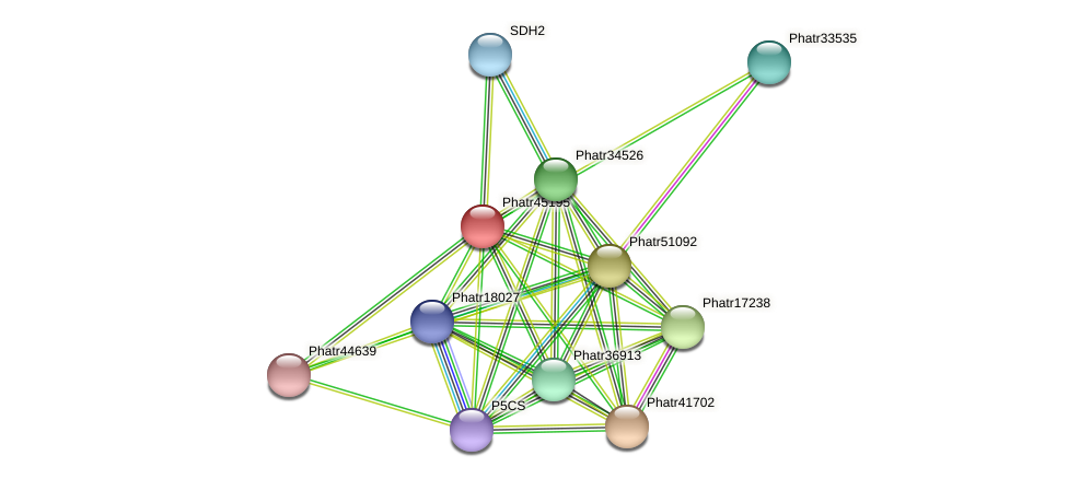 Phatr45195 protein (Phaeodactylum tricornutum) - STRING interaction network