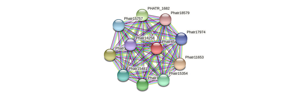 Phatr45441 protein (Phaeodactylum tricornutum) - STRING interaction network