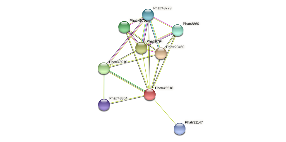 Phatr45518 protein (Phaeodactylum tricornutum) - STRING interaction network