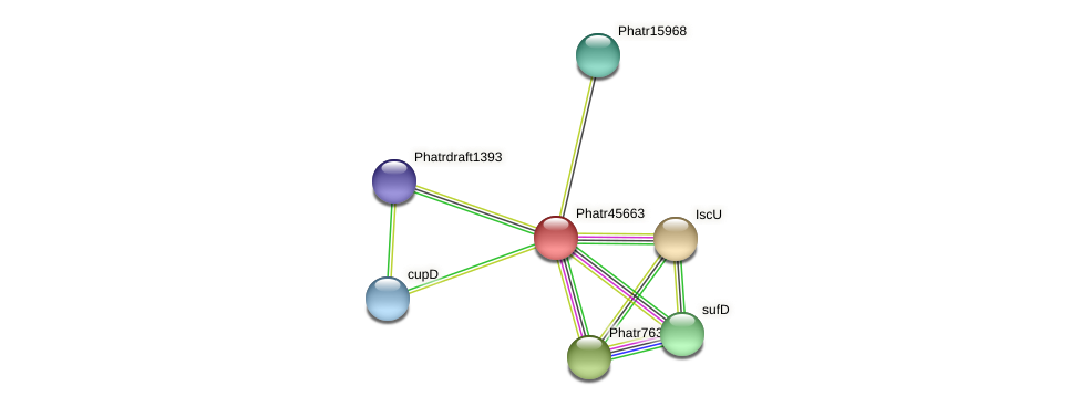 Phatr45663 protein (Phaeodactylum tricornutum) - STRING interaction network