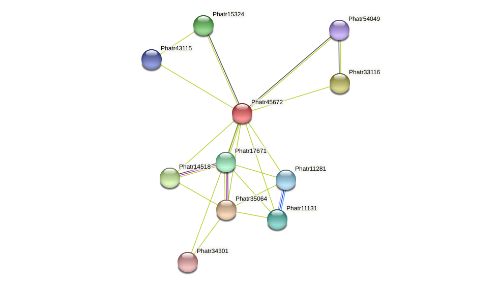 Phatr45672 protein (Phaeodactylum tricornutum) - STRING interaction network