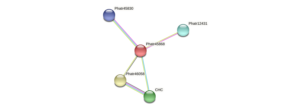 Phatr45868 protein (Phaeodactylum tricornutum) - STRING interaction network