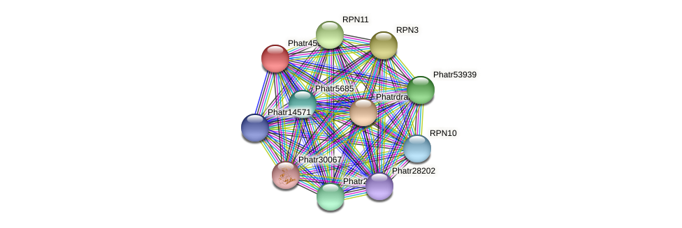 Phatr45998 protein (Phaeodactylum tricornutum) - STRING interaction network