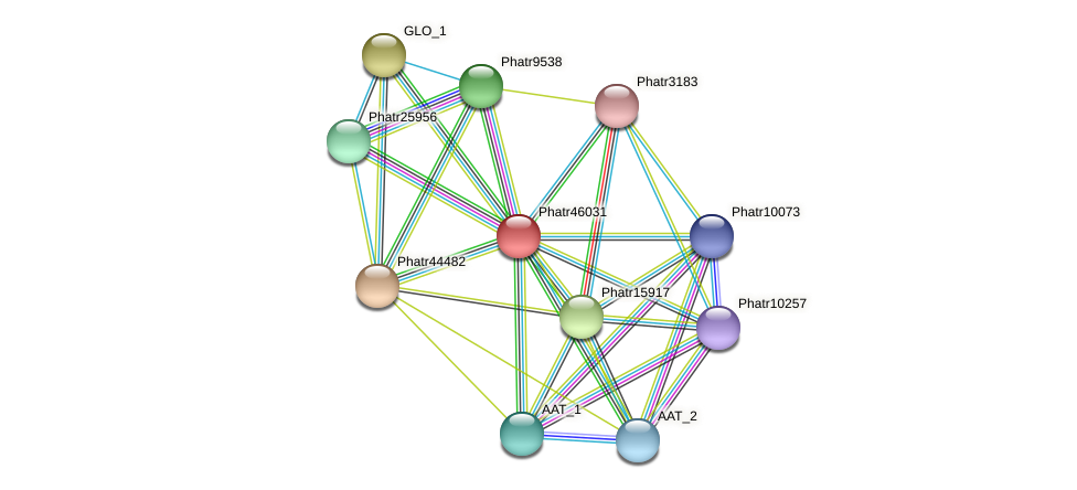 Phatr46031 protein (Phaeodactylum tricornutum) - STRING interaction network