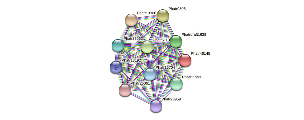 Phatr46145 protein (Phaeodactylum tricornutum) - STRING interaction network