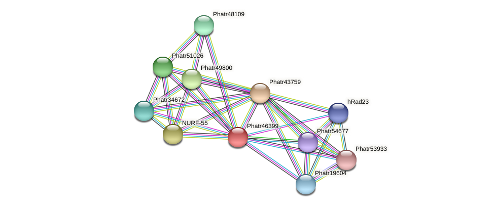 Phatr46399 protein (Phaeodactylum tricornutum) - STRING interaction network