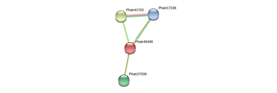 Phatr46408 protein (Phaeodactylum tricornutum) - STRING interaction network