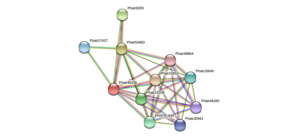 Phatr46438 protein (Phaeodactylum tricornutum) - STRING interaction network