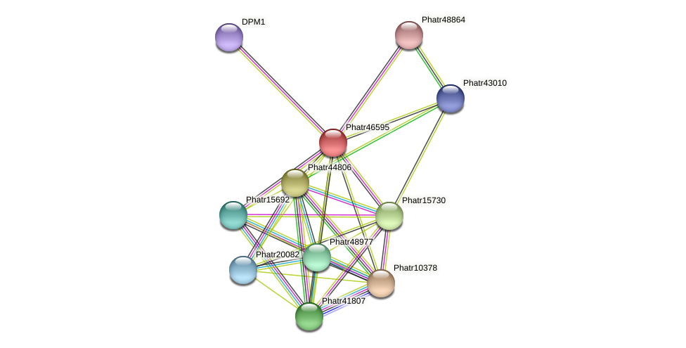 Phatr46595 protein (Phaeodactylum tricornutum) - STRING interaction network