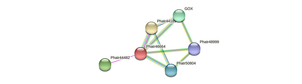 Phatr46664 protein (Phaeodactylum tricornutum) - STRING interaction network