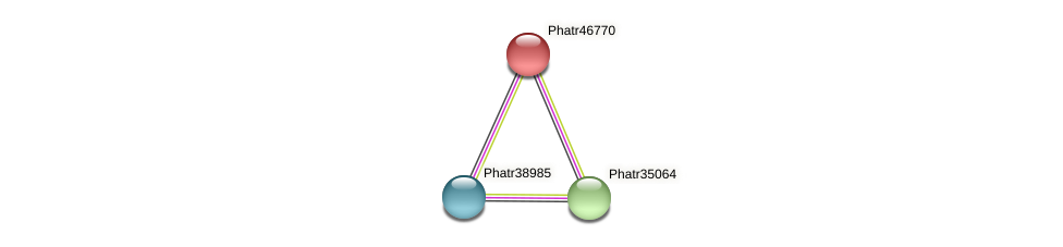 Phatr46770 protein (Phaeodactylum tricornutum) - STRING interaction network