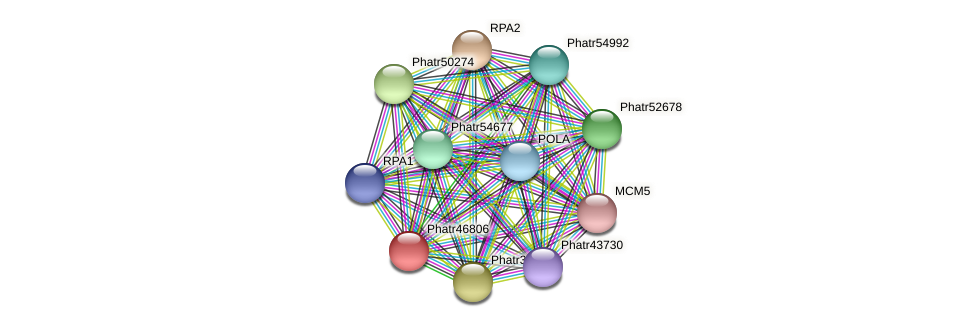Phatr46806 protein (Phaeodactylum tricornutum) - STRING interaction network