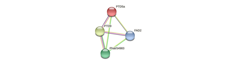 PTD5a protein (Phaeodactylum tricornutum) - STRING interaction network