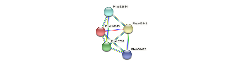 Phatr46843 protein (Phaeodactylum tricornutum) - STRING interaction network