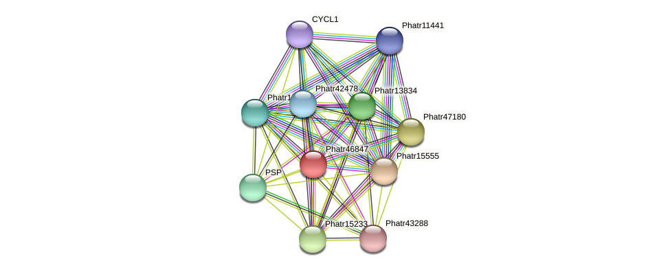 Phatr46847 protein (Phaeodactylum tricornutum) - STRING interaction network