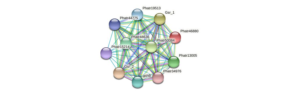 Phatr46880 protein (Phaeodactylum tricornutum) - STRING interaction network