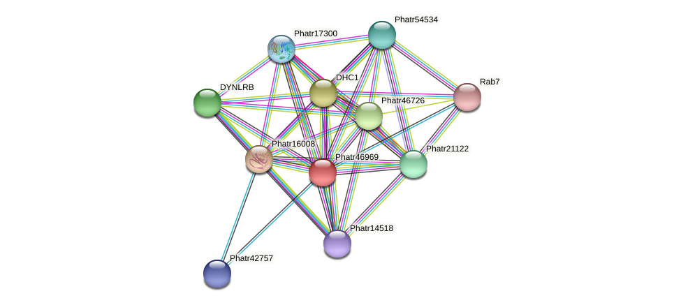 Phatr46969 protein (Phaeodactylum tricornutum) - STRING interaction network