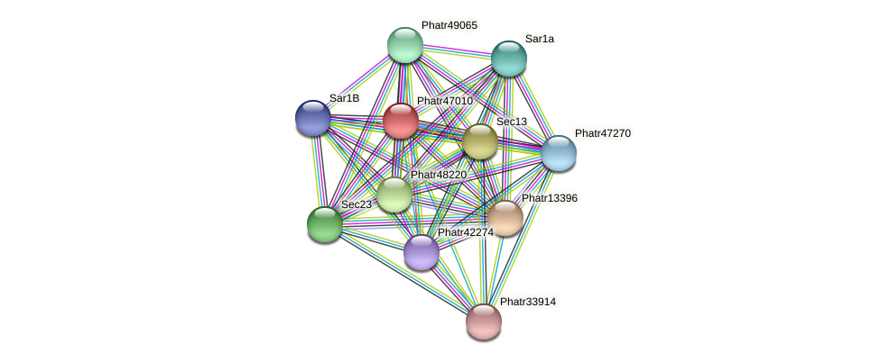 Phatr47010 protein (Phaeodactylum tricornutum) - STRING interaction network