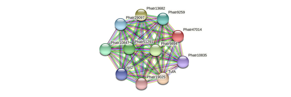 Phatr47014 protein (Phaeodactylum tricornutum) - STRING interaction network