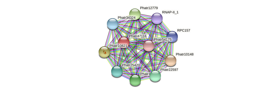 Phatr47116 protein (Phaeodactylum tricornutum) - STRING interaction network