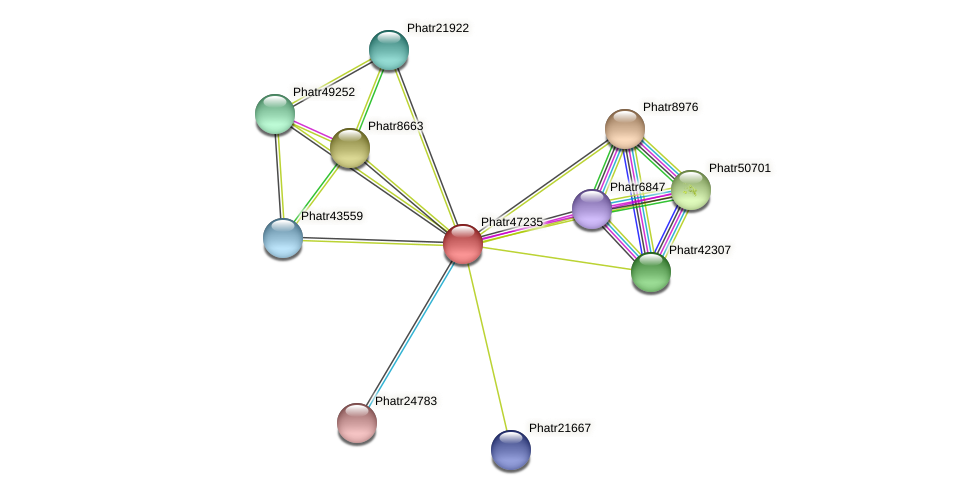 Phatr47235 protein (Phaeodactylum tricornutum) - STRING interaction network