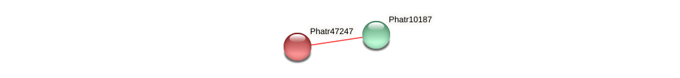 Phatr47247 protein (Phaeodactylum tricornutum) - STRING interaction network