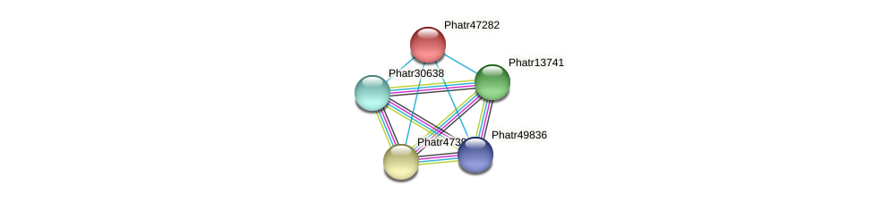 Phatr47282 protein (Phaeodactylum tricornutum) - STRING interaction network