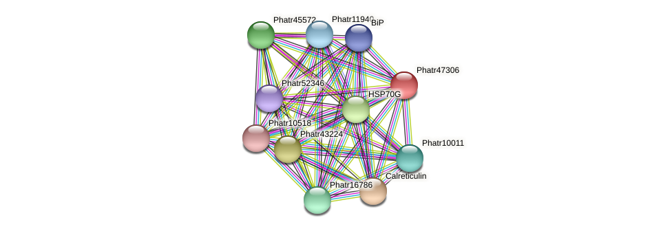 Phatr47306 protein (Phaeodactylum tricornutum) - STRING interaction network
