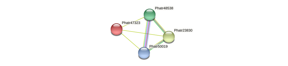 Phatr47323 protein (Phaeodactylum tricornutum) - STRING interaction network