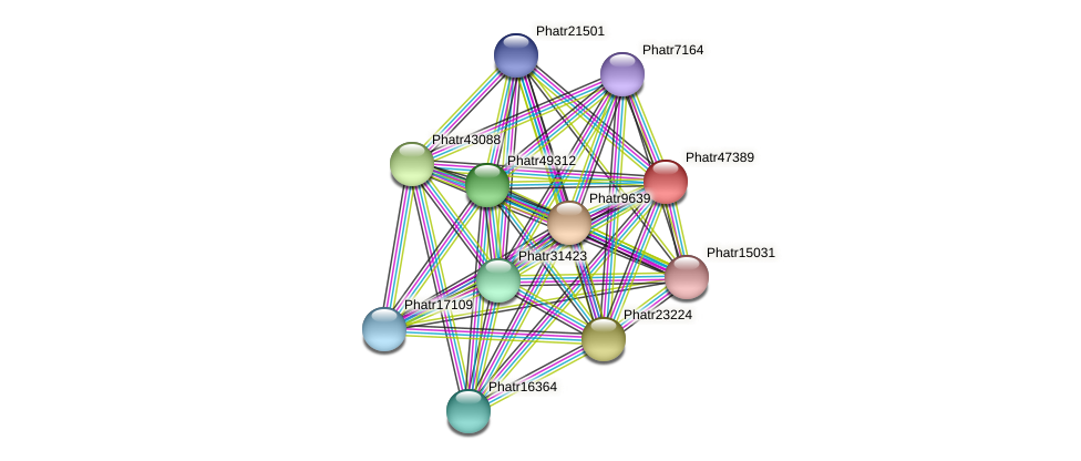 Phatr47389 protein (Phaeodactylum tricornutum) - STRING interaction network