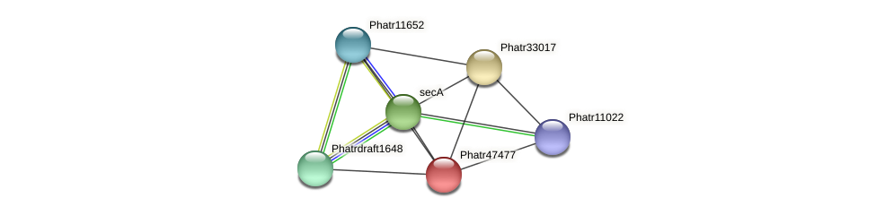 Phatr47477 protein (Phaeodactylum tricornutum) - STRING interaction network