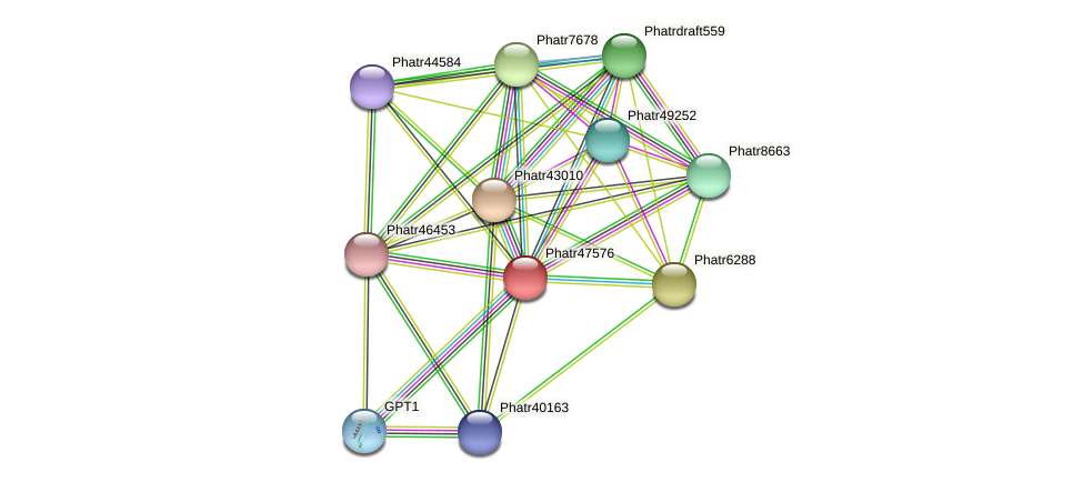 Phatr47576 protein (Phaeodactylum tricornutum) - STRING interaction network