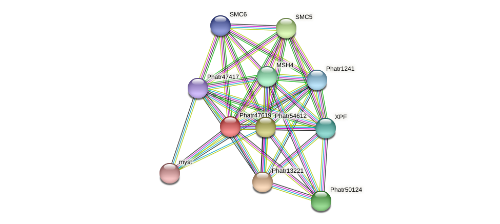Phatr47619 protein (Phaeodactylum tricornutum) - STRING interaction network