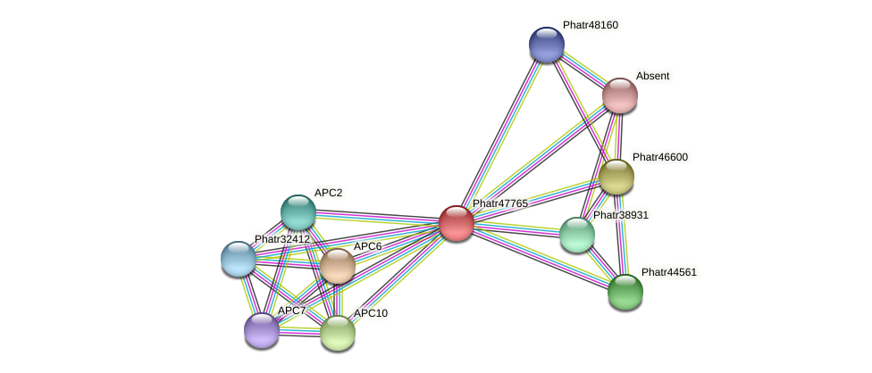 Phatr47765 protein (Phaeodactylum tricornutum) - STRING interaction network