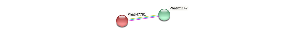 Phatr47781 protein (Phaeodactylum tricornutum) - STRING interaction network
