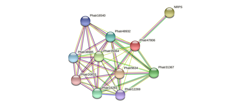 Phatr47806 protein (Phaeodactylum tricornutum) - STRING interaction network