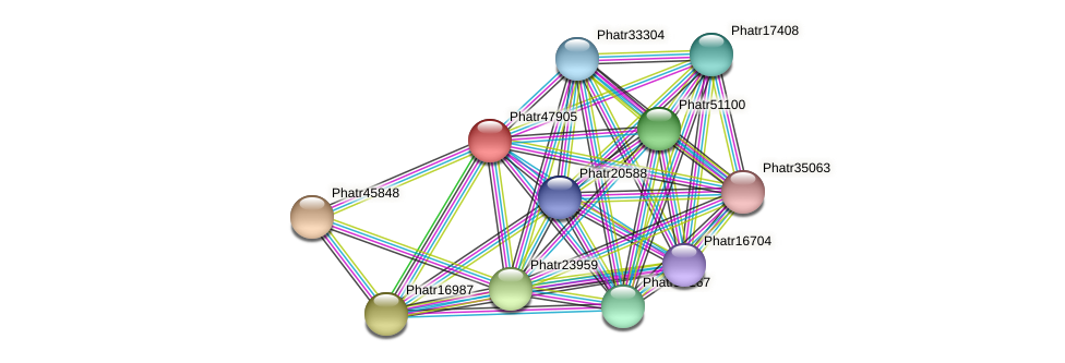 Phatr47905 protein (Phaeodactylum tricornutum) - STRING interaction network