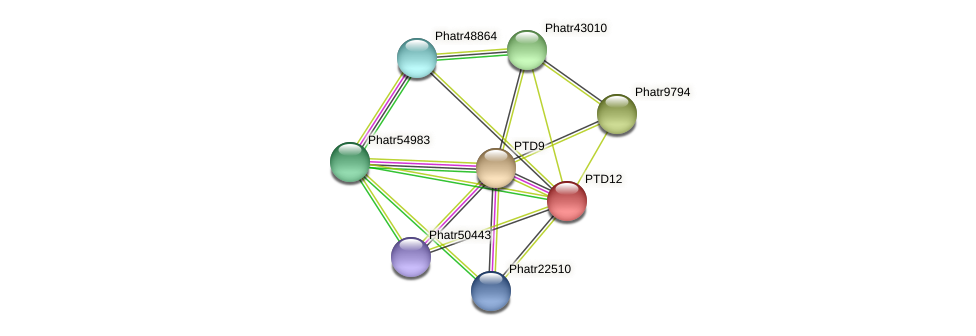 PTD12 protein (Phaeodactylum tricornutum) - STRING interaction network