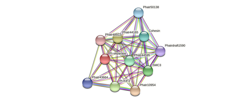 Phatr48451 protein (Phaeodactylum tricornutum) - STRING interaction network