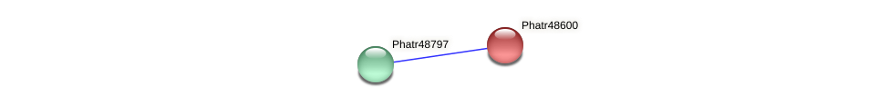 Phatr48600 protein (Phaeodactylum tricornutum) - STRING interaction network